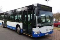 5906-peterbus-01