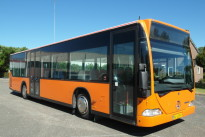 6258-peterbus-01